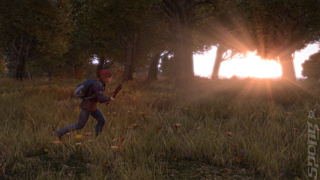 DayZ - PC Screen